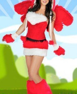 H168 Costum Tematic Angry Birds - Animalute - Haine > Haine Femei > Costume Tematice > Animalute