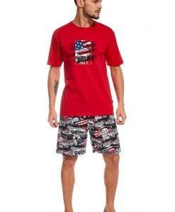 Pijama barbateasca America - Lenjerie pentru barbati - Pijamale